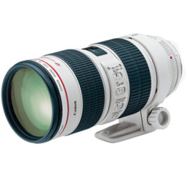 Canon 70 200 2.8 IS Lens Hire Sydney Rental 200mm